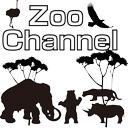 ホラー -ZOOチャンネル