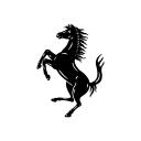 フェラーリチャンネル