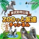 キーワードで動画検索 動物 - 東武動物公園 ZOOっと友達 チャンネル