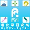 RikenBRCチャンネル