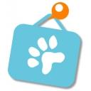 キーワードで動画検索 犬 - ぺっとぼーどチャンネル