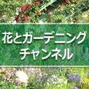 花とガーデニング チャンネル