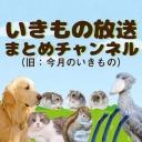 いきもの放送まとめチャンネル(旧:今月のいきもの)