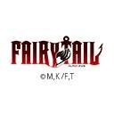 TVアニメ「FAIRY TAIL ファイナルシリーズ」