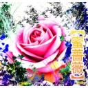 蜜薔薇【みつばら】