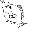 (。╹ω╹。))))))><~Lyrical Fish~