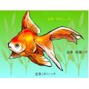 金魚の雑談タイム★