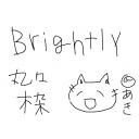 BrightlY 丸々枠
