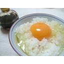 おいしい卵かけご飯