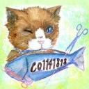 ねこ好きのネコ好きによる猫好きのためのコミュニティ