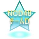 *NCD48* チームD
