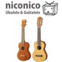 niconicoウクレレ&ギタレレコミュ