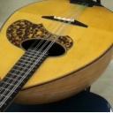 もっさりと楽器を弾く