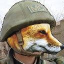 悩めるFoxのゲーム放送局