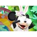 キーワードで動画検索 嵐 - ディズニーとジャニーズをまるっと。
