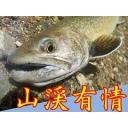 キーワードで動画検索 福島県 - 竿をたがって川行ぐべ