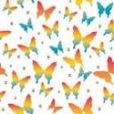 ひたすら蝶蝶を追いかける