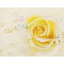 7th Color Palette〜Tune Note〜