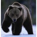 人気の「身長」動画 8,964本 -黒熊のダーク放送