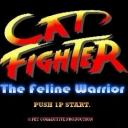 猫好キッドの格闘ゲーム放送