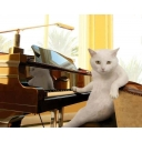 【初見さん大歓迎】ゲーム音楽を弾こう!【鍵盤演奏】