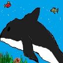NM Dolphin かねイルカ(オクターブ上P)放送局