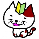 若葉猫の缶詰