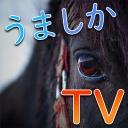 もこたむのPicoPicoTV ~moco`s live station~