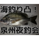 海釣り凸!(泉州夜釣会)