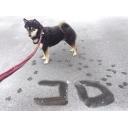 Beware of dog!!