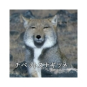 キーワードで動画検索 神曲 - 暇人コミュ(´・ω・`)