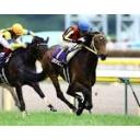 I LOVE HORSE♥ぼーのの週末は競馬場へGO!