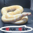 Snake PUB「蛇ruma」