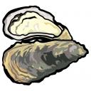 トウホク地方の牡蠣小屋