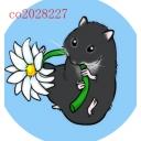 Video search by keyword 動物 - (加納)BIG家のコミュt)です♫ʕ´•ᴥ•`ʔノʕ๑•ᴥ•ʔノ