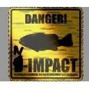 N-IMPACT