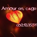 Video search by keyword PSO2 - Amour en cage