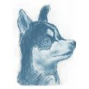 犬の犬による犬のための犬