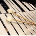 人気の「ピアノ」動画 44,442本 -多趣味なかけさんのおうち