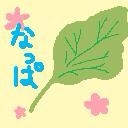 *なっぱFARM*(*´ω`*)