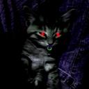 cat愛好家