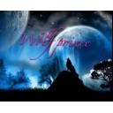「Wolf prince」放送局 (仮)
