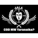 dALA左遷部隊 双龍(ダブルドラゴン)による あの~ あれ。
