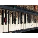 キーワードで動画検索 いーあるふぁんくらぶ - 酒でも飲みながらピアノを練習しる