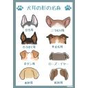犬耳の呑み屋