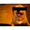 キーワードで動画検索 著作権 - けんけんの人生凹凸コミュニティ