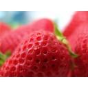 ★strawberry★
