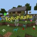 ToRoPiKaRuのコミュニティ