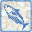 魚類放送局  ーシェフの気まぐれ風ー