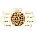 作業用BGM -大豆のすすめ